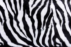 斑马皮肤样式 免版税库存照片