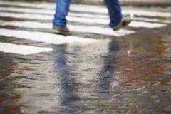 斑马线在雨中 免版税库存图片