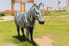 斑马非洲公园在阿斯旺,埃及 免版税库存图片