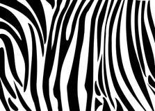 斑马黑条纹皮肤 免版税库存图片