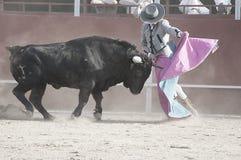 斗牛。从西班牙的战斗的公牛图片。黑公牛 免版税图库摄影