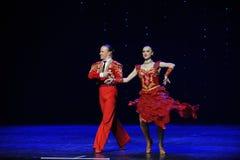 斗牛舞蹈这奥地利的世界舞蹈 免版税库存照片