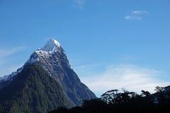 斜接与当地trrees在Milford Sound,新西兰的峰顶 库存图片