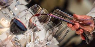 斟酒服务员倾吐的酒到从混料盆,豪华吃饭的客人的玻璃里 免版税库存图片
