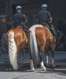断裂的警察 免版税图库摄影