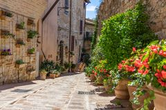 斯佩洛镇的狭窄的浪漫街道是装饰的wi 库存图片