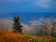 斯内克河的地狱的峡谷 库存图片