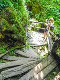 斯卢尼Rastoke瀑布  库存图片
