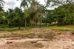 洛斯因赫尼奥斯山谷,特立尼达,古巴 免版税图库摄影
