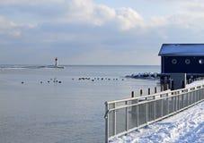斯坦利港港口视图在冬天 免版税库存图片
