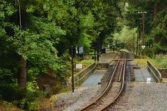 斯坦贝奇,德国- 2018年9月01日:森林火车站在撒克逊人的矿石的Pressnitz河谷说出安德烈亚斯Gegentrum Stolln名字 库存图片