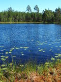 斯堪的纳维亚夏天风景 库存照片