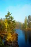 斯堪的纳维亚河 免版税库存图片