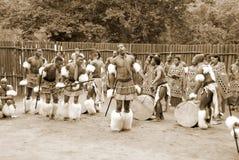 斯威士人舞蹈家 库存图片