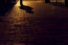 戴维斯广场剑桥 库存照片