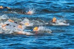 斯德哥尔摩- 8月, 25 :在精神游泳的混乱开始在t 库存图片
