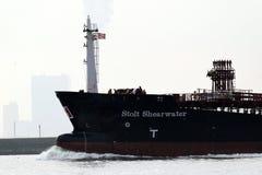 斯托尔特海鸥类飞鸟,斯托尔特海鸥类飞鸟,一艘化工/石油产品罐车船 库存照片