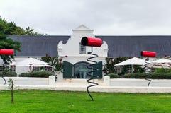 斯泰伦博斯酒区域葡萄园在南的开普敦外面 库存照片