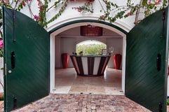 斯泰伦博斯酒区域葡萄园在南的开普敦外面 免版税图库摄影