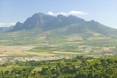 斯泰伦博斯酒区域葡萄园,在开普敦外面,南非 图库摄影