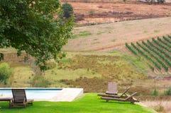 斯泰伦博斯,葡萄酒增长区域的心脏在南Afri的 免版税图库摄影