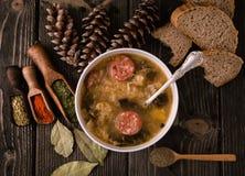 斯洛伐克圣诞节圆白菜汤用在自然backgrou的蘑菇 库存图片