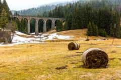 斯洛伐克火车高架桥历史桥梁在森林和山里 历史的铁路和运输 有雪的草甸在fo 库存照片
