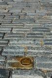 斯洛伐克,布拉索夫 在鹅卵石街道的黄铜冠标志 免版税图库摄影
