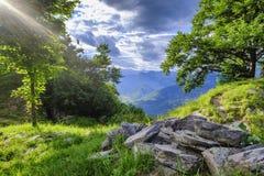 斯洛文尼亚山的绿色草甸 免版税库存照片