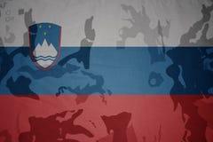 斯洛文尼亚的旗子卡其色的纹理的 装甲攻击机体关闭概念标志绿色m4a1军用步枪s射击了数据条工作室作战u 库存图片