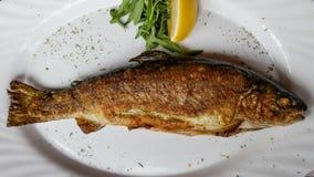 斯洛文尼亚语油煎的鱼 免版税库存照片