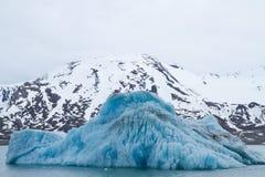 斯瓦尔巴特群岛冰川 免版税库存照片