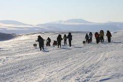 斯瓦尔巴特群岛挪威 免版税库存图片