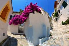 斯科派洛斯岛希腊 库存照片