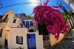 斯科派洛斯岛希腊 免版税库存图片