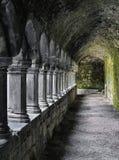 斯莱戈修道院,斯莱戈,爱尔兰共和国 免版税库存照片