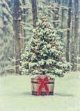 斯诺伊与五颜六色的光的圣诞树在森林-葡萄酒里 库存照片