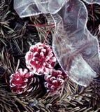 斯诺伊与冷杉锥体和装饰白色磁带的杉树 背景蓝色雪花白色冬天 库存图片