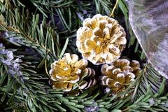 斯诺伊与冷杉锥体的杉树 背景蓝色雪花白色冬天 免版税库存图片