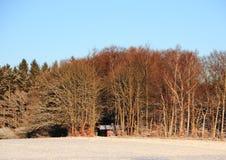斯诺伊与村庄的冬天风景在森林里 库存照片