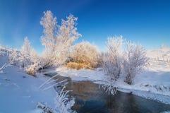 斯诺伊与灌木的冬天山沟在The Creek银行,俄罗斯,乌拉尔, 库存照片