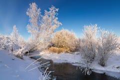斯诺伊与灌木的冬天山沟在The Creek银行,俄罗斯,乌拉尔, 免版税库存照片