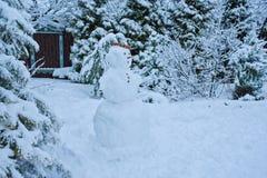 斯诺伊与雪人的冬景花园视图 免版税库存图片