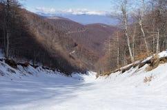 斯诺伊倾斜在3-5 Pigadia滑雪中心, Naoussa,希腊 图库摄影