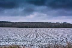 斯诺伊农夫领域在冬天 免版税库存图片