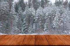 斯诺伊冬天在森林背景中 从黑暗的木ga的看法 免版税库存图片