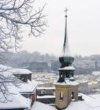 斯诺伊冬天在萨尔茨堡 免版税图库摄影