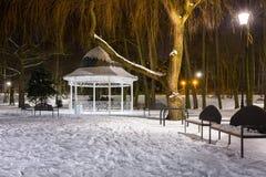 斯诺伊冬天在黄昏的公园 图库摄影