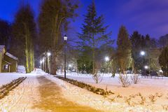 斯诺伊冬天在黄昏的公园 免版税库存照片
