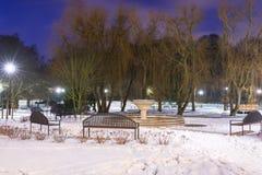 斯诺伊冬天在黄昏的公园 库存照片